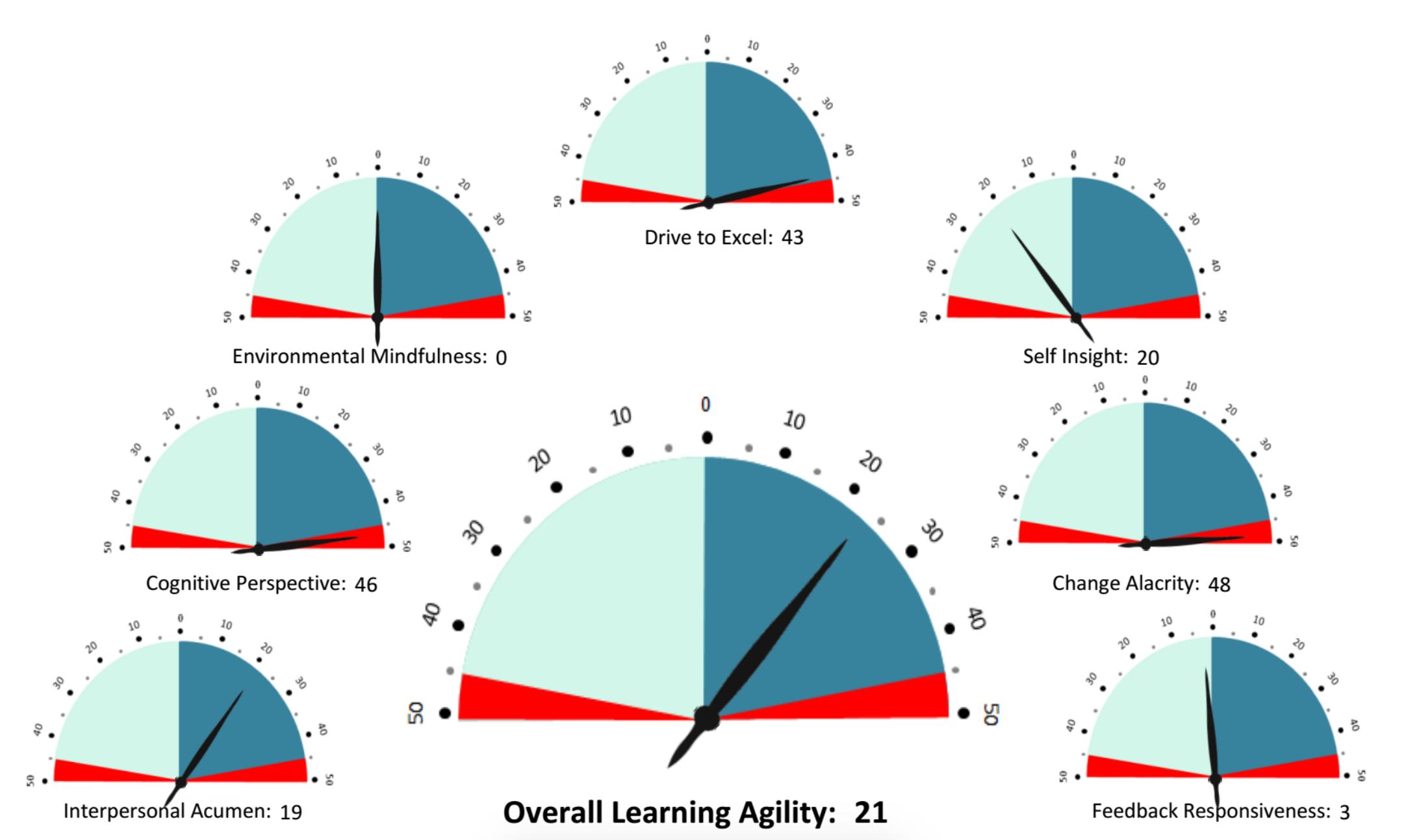 Learning Agility Profile